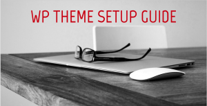 WP Theme Setup Guide Cover Image